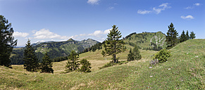 Austria, View of alp pasture with Osterhorngruppe mountain at Postalm - WW002604