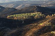 Spain, La Gomera, View from Alto de Garajonay mountain - SIE003156