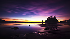 USA, Washington, View of Second Beach - SMA000066