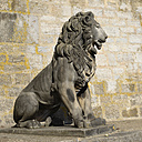 Germany, Wuerzberg, Statue of lion at River Main - HL000043