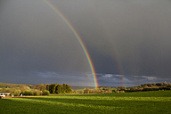Europe, Germany, Rhineland-Palatinate, View of rainbow at rural landscape - CSF016226