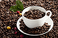 Roasted coffee beans with coffee up, close up - CSF016248