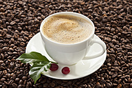 Cup of coffee with beans, close up - CSF016251