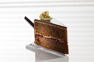 Slice of Sachertorte on cake server, close up - CSF016281