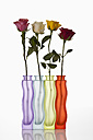 Variety of flower vases with roses on white background, close up - CSF016542