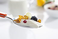 Spoon of yogurt with cornflakes and fruits against white background, close up - CSF016575