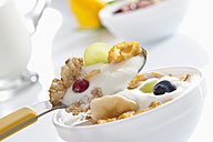 Spoon of yogurt with cornflakes and fruits against white background, close up - CSF016578