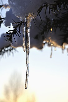 Germany, Bavaria, Icicles melting - AXF000426