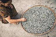 Vietnam, Hanoi, Woman with dried fish - MBE000544