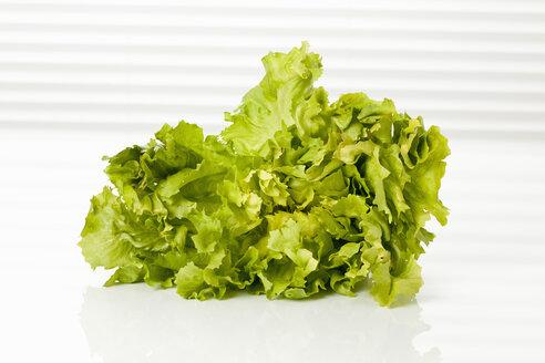 Endive salad, close up - CSF016837
