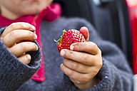 Girl holding strawberry in her hand, close up - JFEF000005