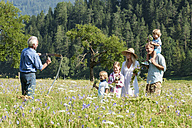Germany, Salzburg, Farmer and family in summer meadow, smiling - HHF004519