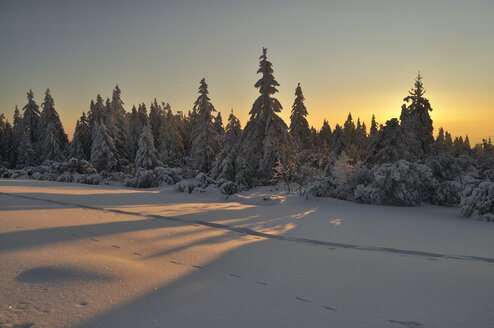 Germany, View of Black Forest during sunrise - JOKF000018