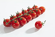 Cherry tomatoes on white background, close up - CSF017648