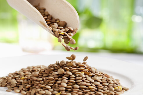 Lentils pouring from wooden scoop, close up - CSF017711