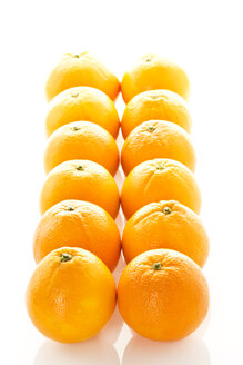Row of oranges against white background, close up - MAEF006096