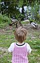 Germany, Girl feeding ducks by pond - JFE000034