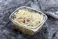 Mixed sprouts salad in container, close up - CSF018120