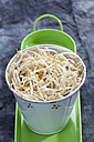 Mung bean sprouts in container, close  up - CSF018129