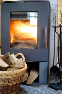 Fireplace with wood burning - MHF000156