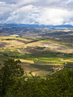 Italy, View of Tuscany from Montalcino - LF000530