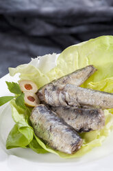 Plate of sardines in oil, close up - CSF018765