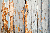 Spain, Wooden door, close up - WVF000360