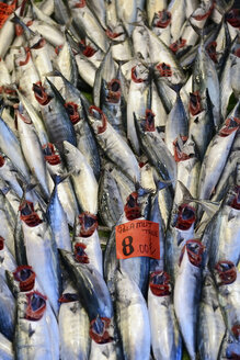 Turkey, Istanbul, Fresh fish, close up - LHF000042