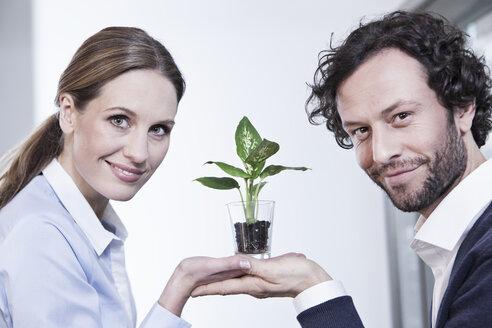 Germany, North Rhine Westphalia, Cologne, Portrait of businesscouple holding potted plant, smiling - FMKF000764