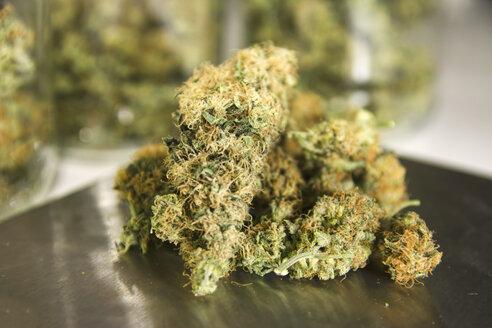 Studio, Marijuana drugs on digital scale, close up - REA000013