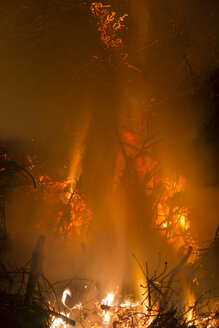 Germany, Forest fire in Heilbad Heiligenstadt - SJ000023