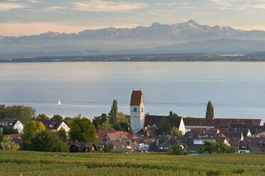 Germany, Baden Wuerttemberg, View of vineyard with church at Lake Constance - SH000678