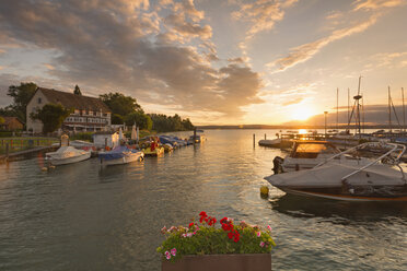 Germany, Flower pot in front of Lake Constance and half timbered house in background - SH000693
