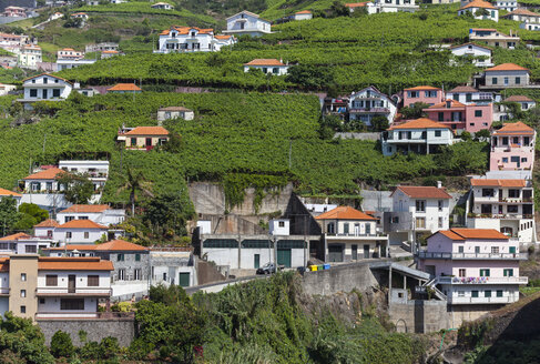 Portugal, Funchal, View of houses - AM000112
