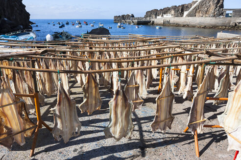 Portugal, Stockfish for drying at Camara de Lobos near Funchal - AMF000162