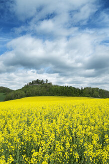 Germany, Baden Wuerttemberg, View of Yellow rape field - EL000145