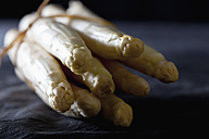 Bunch of white asparagus on textile, close up - CSF019409
