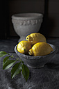 Bowl of lemons with leaves, close up - CSF019381