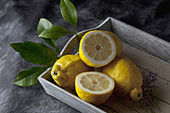 Lemons with citrus leaves on tray, close up - CSF019378