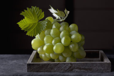 Bunch of grapes on tray, close up - CSF019370