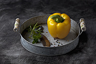 Capsicum with knife and peppers on tray, close up - CSF019368