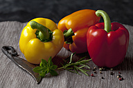 Capsicum with knife and peppers, close up - CSF019365