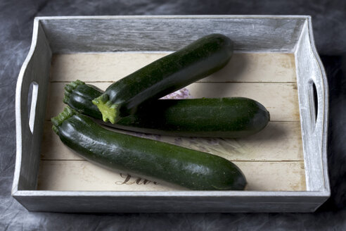 Courgette on tray, close up - CSF019403