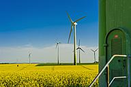 Germany, Saxony, Wind turbines in oilseed rape field - MJF000198