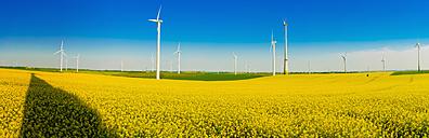 Germany, Saxony, Wind turbines in oilseed rape field - MJF000192