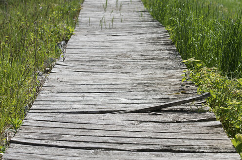 Austria, Broken boardwalk - CWF000054