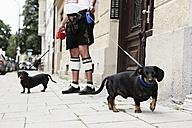 Germany, Bavaria, Munich, Senior man walking with dogs - ED000030