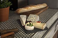 Vatiety of cheese on chopping board - FMKYF000324