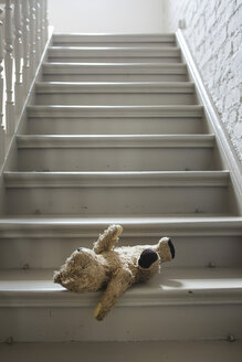 Teddybear on steps - FMKYF000443