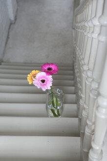 Flower vase on steps - FMKYF000331